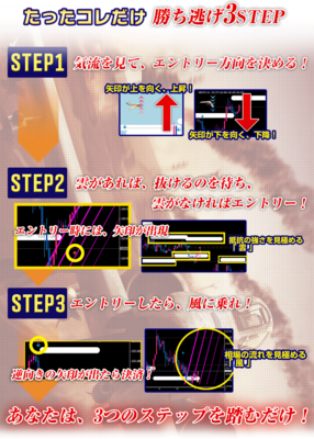 3step.png